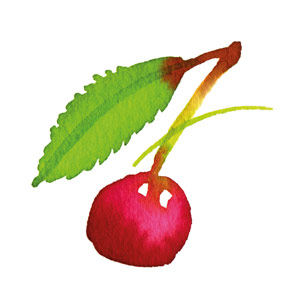 Organic Morello Cherry